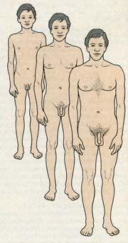 lezbiyanki-lizhut-anus-popu-klitor