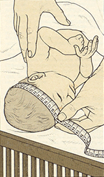 measure the infant head