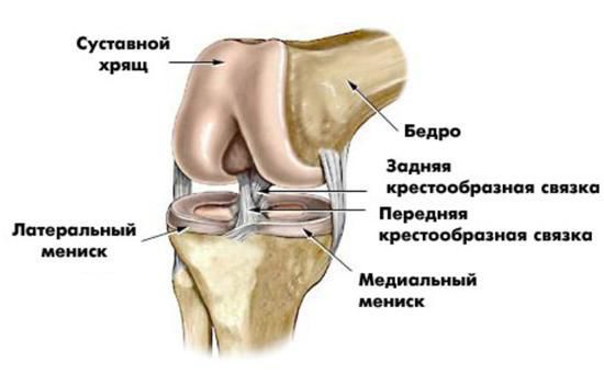 Разрыв мениска коленного сустава мкб доа мелких суставов кистей